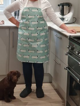Duck Egg Dachshund Dogs Adult or Child Oilcloth Wipe Clean Apron