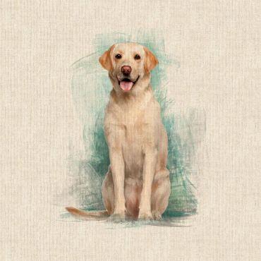 "Yellow Labradors 18"" x 18"" Cushion/Bag Panel"