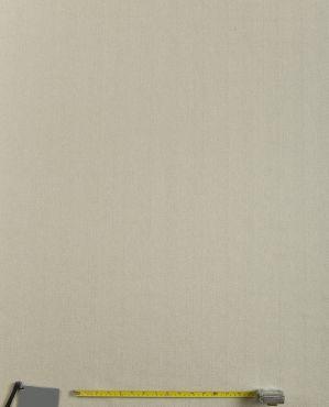 Harris Caramel Plain Curtain and Upholstery Fabric