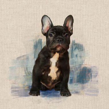 "French Bulldog 18"" x 18"" Cushion/Bag Panel"